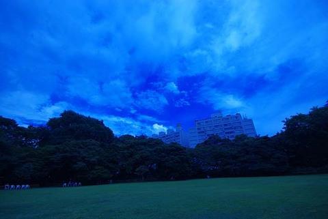 iwasaki0907-01.jpg