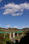 torisawa-1.jpg